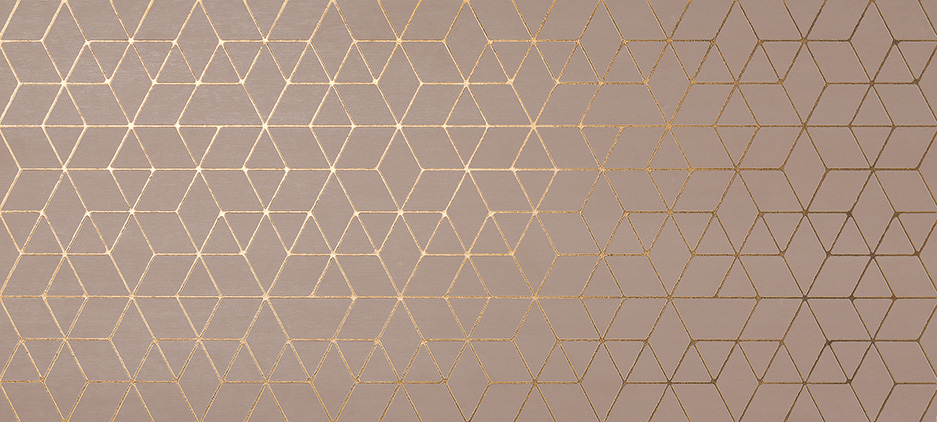 ATLAS CONCORDE  MEK Rose Hexagon 50x110cm, 0,55m2/bal